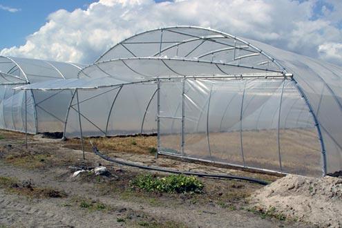 Invernadero de plástico tipo Túnel Agrolux