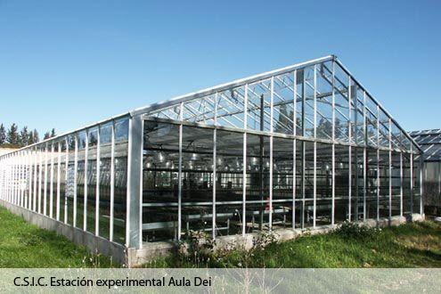 Invernadero Reylux con cubierta de cristal en la Estación Experimental Aula Dei del C.S.I.C.