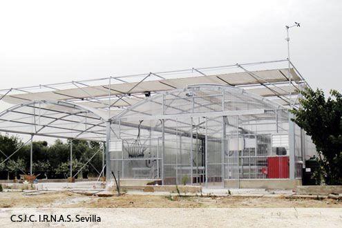 Invernadero para investigación Fiberlux equipado con pantalla térmica Exterior