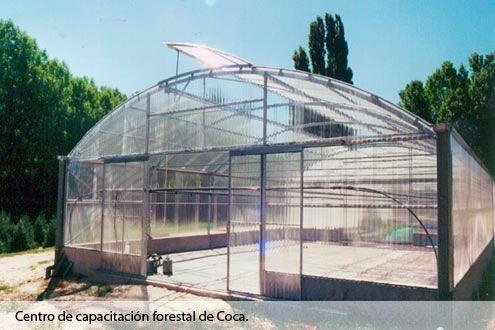 Invernadero Fiberlux con cubierta de policarbonato en el Centro de Capacitación Forestal de Coca