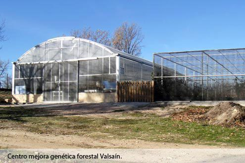 Invernadero Fiberlux con cubierta de policarbonato y Umbráculo con malla agrotextil