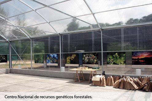 Invernadero de policarbonato Fiberlux en el Centro Nacional de Recursos Genéticos Forestales