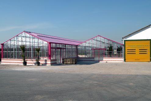 Invernadero de cristal Reylux R9 en Centro de Jardinería.