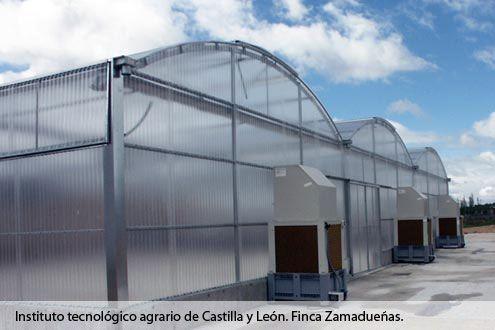 Invernadero de policarbonato Fiberlux en el Instituto Tecnológico Agrario de Castilla y León