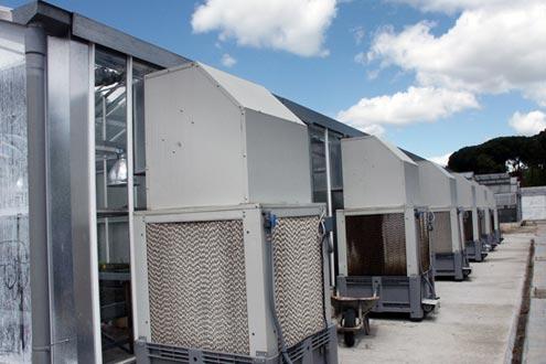 Enfriadores evaporativos cooling system en invernadero Reylux