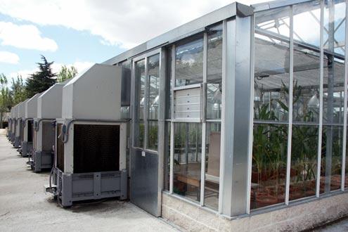 Cooling system mediante enfriadores evaporativos autónomos
