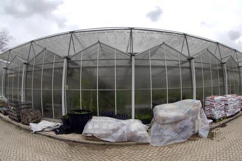 Uso de pantallas para la producción de tomates