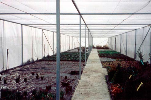 Umbráculo plano Umbralux para vivero de producción de planta ornamental