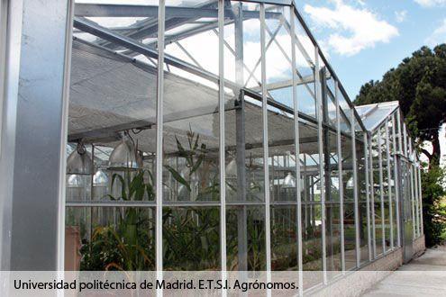 Invernadero de cristal Reylux en Campo de Prácticas de la Escuela Técnica Superior de Ingenieros Agrónomos de la Universidad Politécnica de Madrid