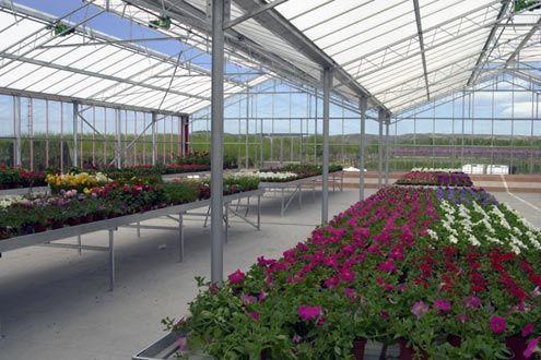 Invernadero Reylux con mesas expositoras fijas en su interior, en garden center