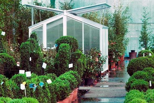 Invernadero para jardín Gardenlux