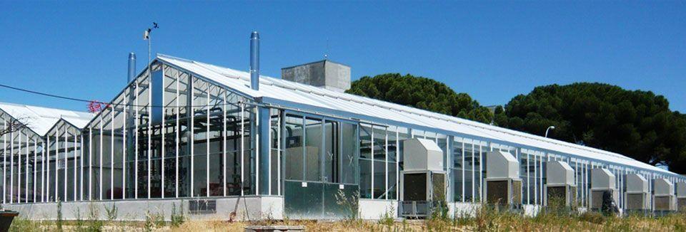 Invernadero de policarbonato Reylux R9 en Centro Nacional de Biotecnología y Genómica de Plantas - Campus de Montegancedo - Universidad Politécnica de Madrid