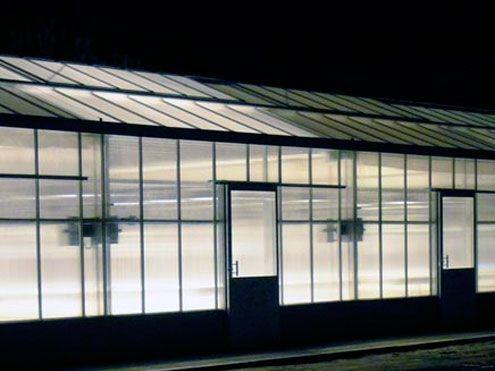 Iluminación artificial en invernadero Reylux R9.