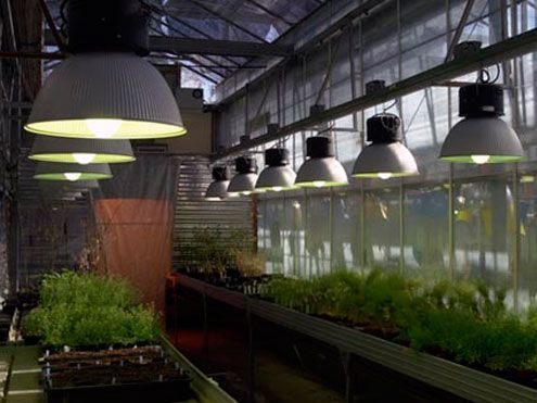 Iluminación artificial en invernadero de investigación. Sistemas D.R.