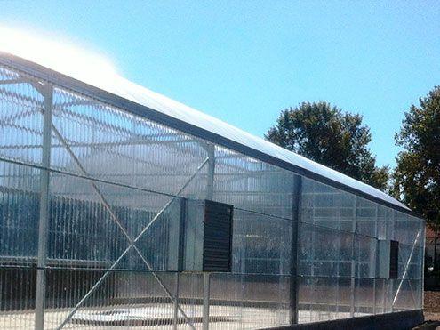 Paneles humidificadores en lateral de invernadero, Cooling system. Sistemas D.R.