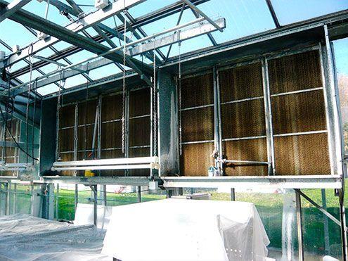 Paneles humidificadores de celulosa para cooling system funcionamiento por depresión en invernadero