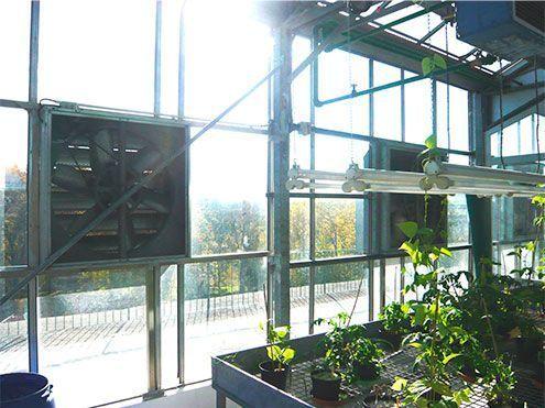 Ventiladores en lateral de invernadero Cooling System funcionamiento por depresión. Enfriamiento evaporativo por depresión en invernaderos Sistemas D,R,