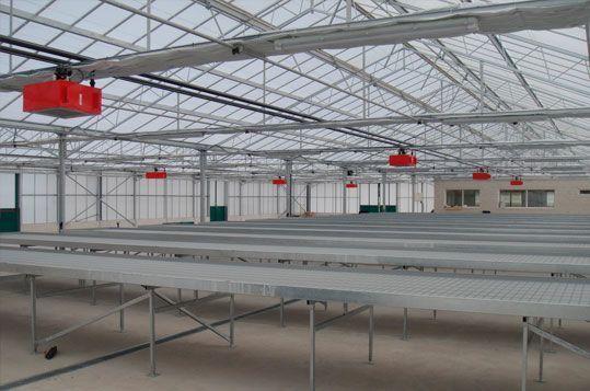 Vista interior invernadero Reylux con mesas de cultivo y aerotermos de agua caliente. Sistemas D.R.