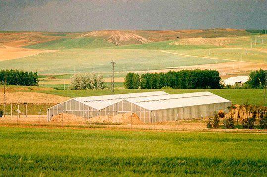 Invernadero Reylux de gama alta con cubierta de policarbonato celular para Viveros San Andrés . Segovia