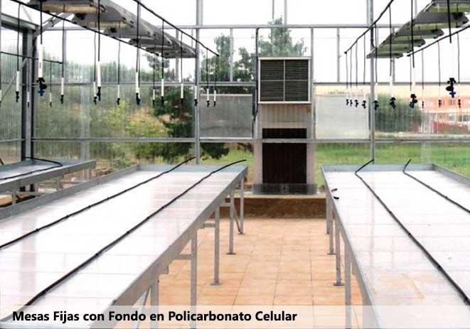 Mesas de cultivo fijas con fondo en policarbonato celular