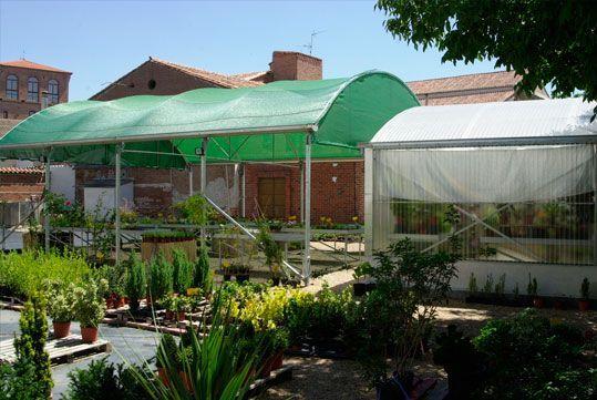 Umbráculo Curvo Umbralux para Garden Center con malla de sombreo verde