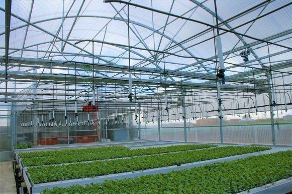 Instalación de riego por aspersión en invernadero realizada por Sistemas D.R.