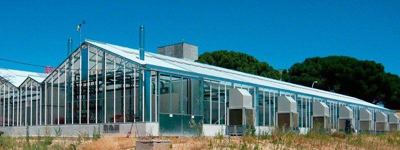 Clasificación de invernaderos según su tipo de estructura